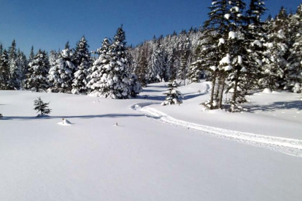 pg_winter2_full