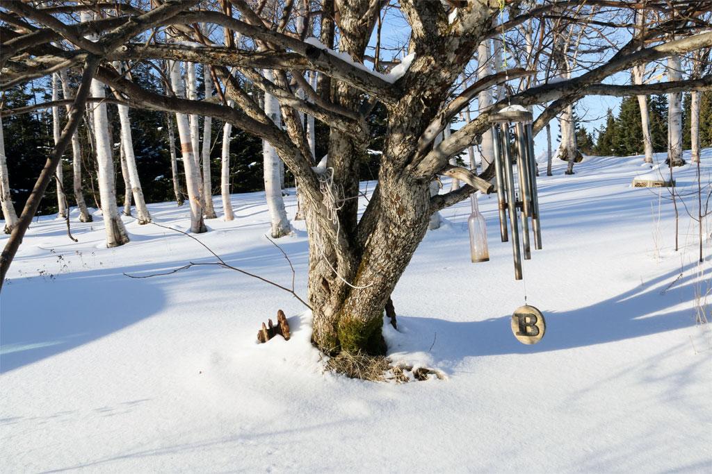 pg_winter5_full
